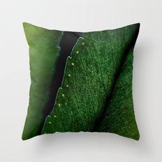 Slash Throw Pillow