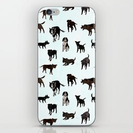 Dogs Unwanted iPhone Skin