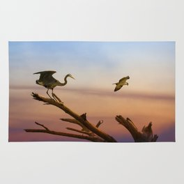 Heron And Osprey At Sunset Rug
