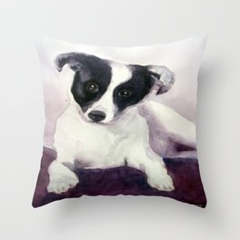 A stray dog up for adoption Throw Pillow