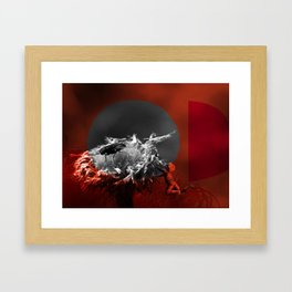 the boy and the fly Framed Art Print