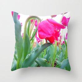 Hang Low Throw Pillow