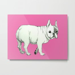 Frenchie on Pink Metal Print
