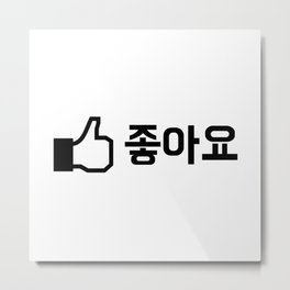 Like in Korean Metal Print