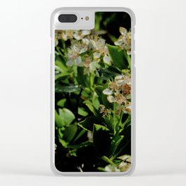 Stopping to Smell the Flowers at the Top of the Mountain Clear iPhone Case