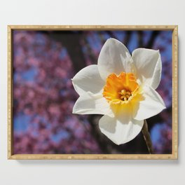 Daffodil with Cherry Blossoms Serving Tray