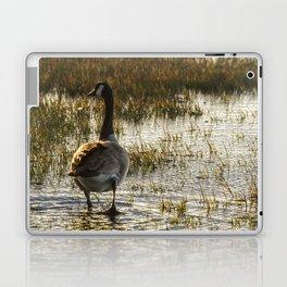 The Golden Goose Laptop & iPad Skin
