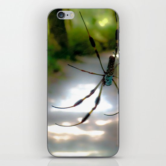 On a precarious path iPhone & iPod Skin