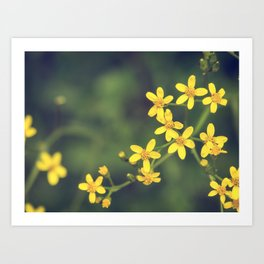 yellow bursts Art Print