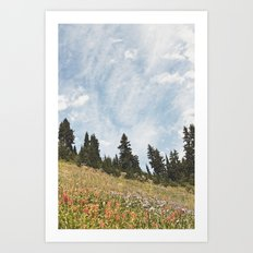 Mountain Flowers in the Sun Art Print