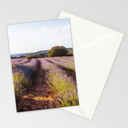 Lavender Fields at Sunset Stationery Cards