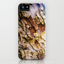 Tree Trunks - Faces In Places iPhone Case
