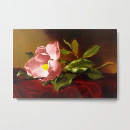 A Pink Magnolia on Red Velvet by Martin Johnson Head Metal Print