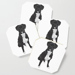 The Black & White Boxer Coaster