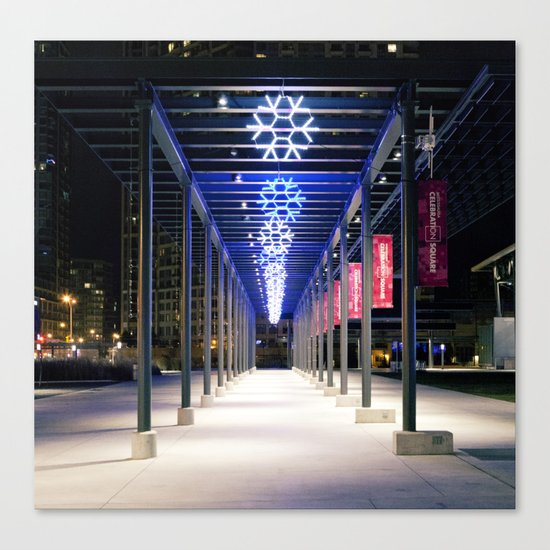 Path Of Flakes Canvas Print
