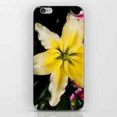 Yellow Lily iPhone & iPod Skin