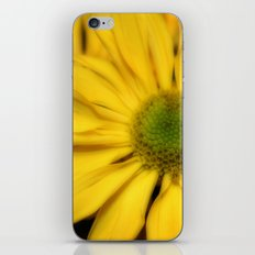 sunflowers2 iPhone & iPod Skin