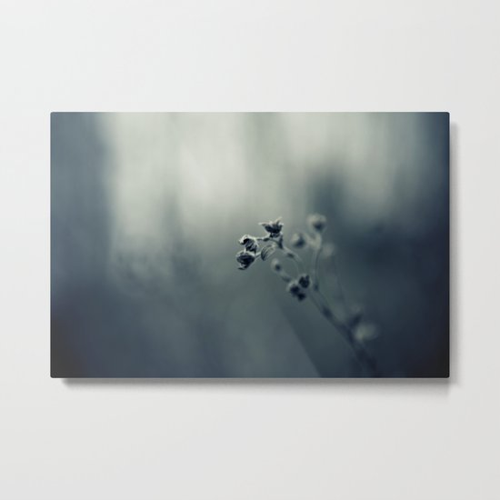 seeking warmth Metal Print