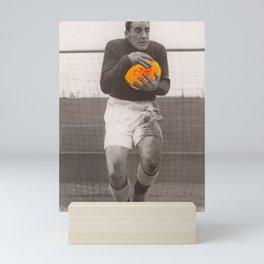 Fruity football Mini Art Print
