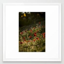 Virágágy Framed Art Print