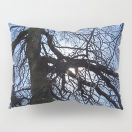Nearly Abstract Tree on clear blue sky Pillow Sham