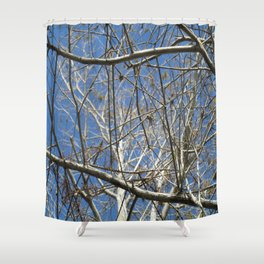 Crisp Cold Florida Morning Shower Curtain