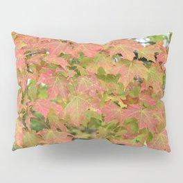 Maple Leaves | Canada 150 | Nadia Bonello Pillow Sham