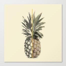 Double Pineapple Canvas Print