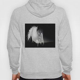 Horse Black And White Landscape Hoody