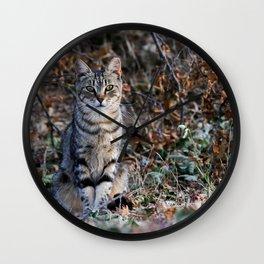 Sitting cat posing Wall Clock