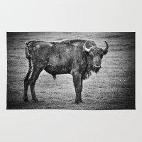buffalo Area & Throw Rugs featuring Buffalo by davehare