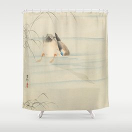 Wild duck, the head under water - Ohara Koson (1900-1930) Shower Curtain