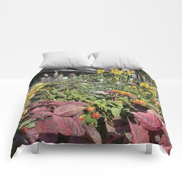 Madison WI Urban Color 2 Comforters