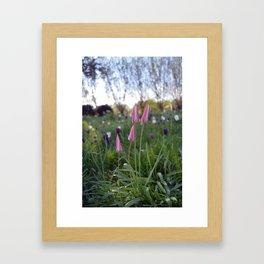 Spring flowers #3 Framed Art Print