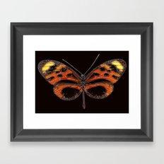 Untitled Butterfly 2 Framed Art Print