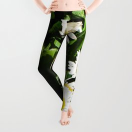Spring Daisy Photography Print Leggings