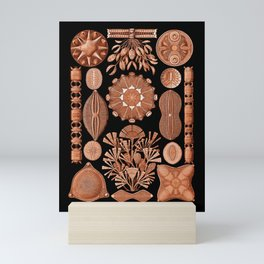Diatomeae in Tangerine Mini Art Print