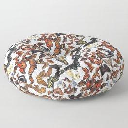 Butterflies of Maine Pattern Floor Pillow