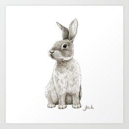 "Rabbit Artwork - ""Spinning Cotton-Tails"" Bunny Drawing Art Print"