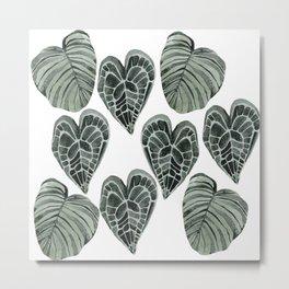 house plant Metal Print