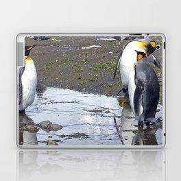 King Penguin Reflection Laptop & iPad Skin