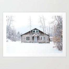 Aspen in the Winter Art Print
