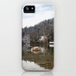 Beautiful scene of swan (lat. Cygnus olor) on the lake iPhone Case