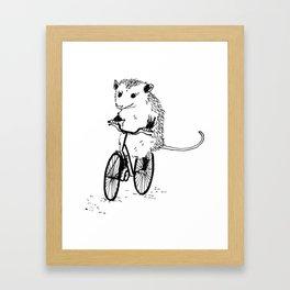 Opossums bike, too Framed Art Print