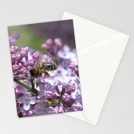Abeja en el lilo Stationery Cards