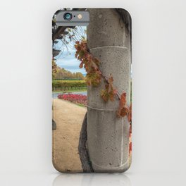 Column with Grapevine iPhone Case