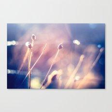 Winter Flowers (Color Photograph) Canvas Print