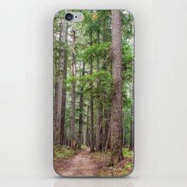 Forest Trail, Pacific Northwest, Washington State iPhone Skin