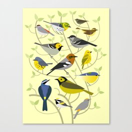 New World Warblers 2 Canvas Print