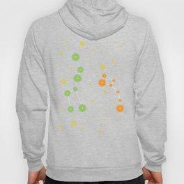Citrus constellations Hoody